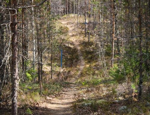 MTB Tuoppu tarjoaa pyöräilijälle haasteita